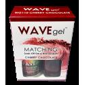 WAVE GEL MATCHING WG110