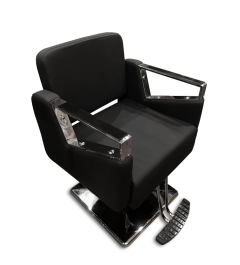 JZ 006-68 Styling Chair Metal